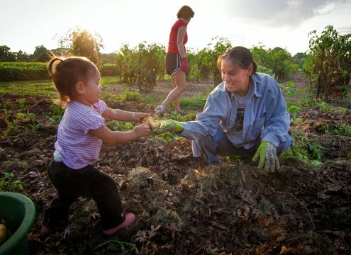 woman and child gleaning for Farm To Food Bank