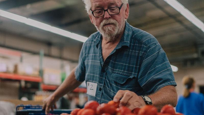 man getting tomatoes