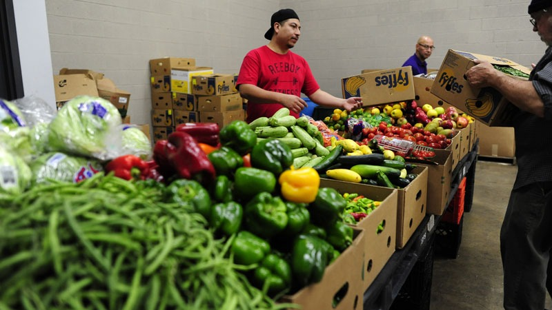 nutritious food distribution in the city