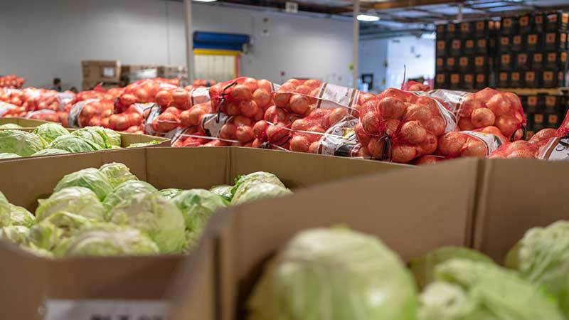 onions and cabbage in a warehouse