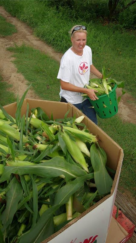 Amy Cawley holding corn basket