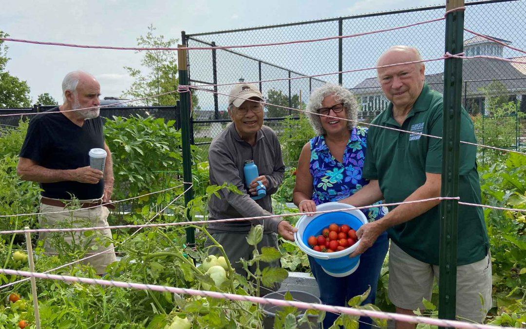 Bay Bridge Cove's Community Garden is Producing Change